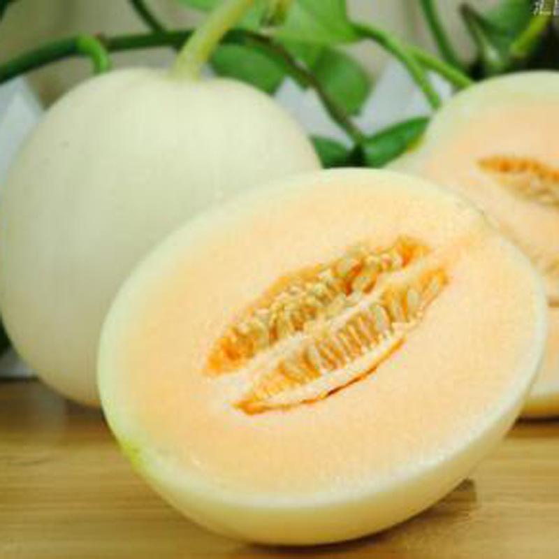 Trái cây(kiwi,táo) Guolehui, Thiểm Tây, Liangliang, dưa hạt nhỏ, trái cây tươi theo mùa, tóc thẳng