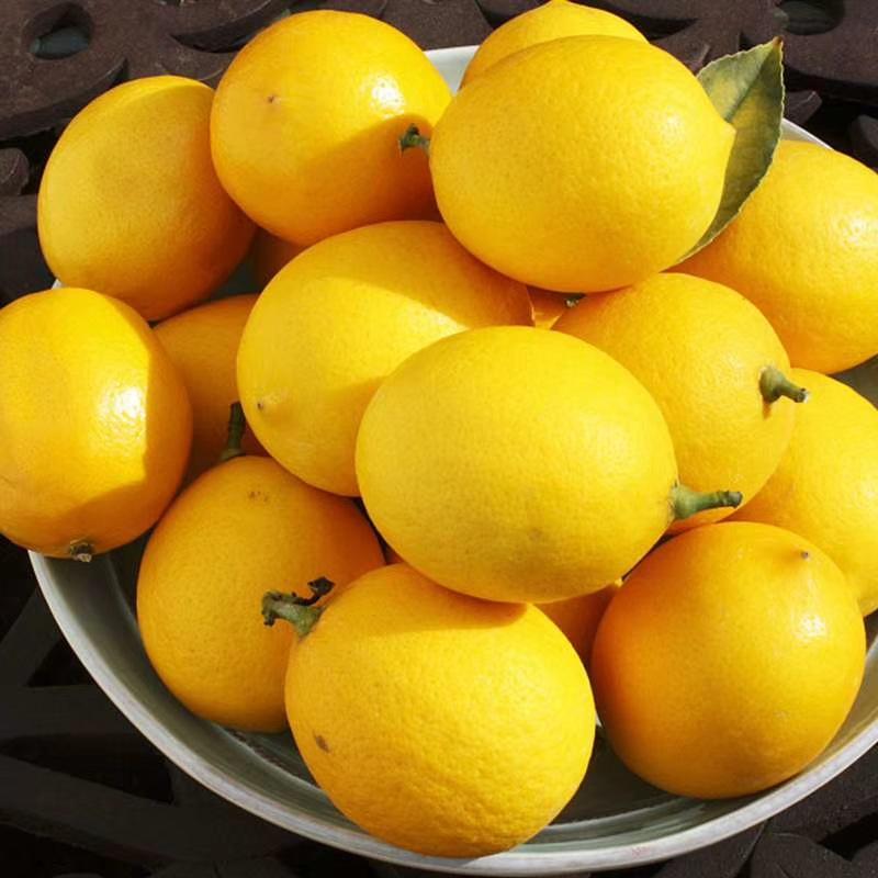 Trái cây(kiwi,táo) Tứ Xuyên Anyue Fresh Lemon Class 3 Fruit Single 98g-220g Fruit New hương thơm vườ