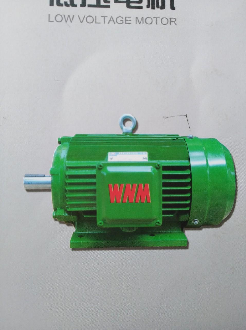 Wannan Mô-tơ điện / Động cơ điện Motor Spot Direct YX3-200L-4. 30KW