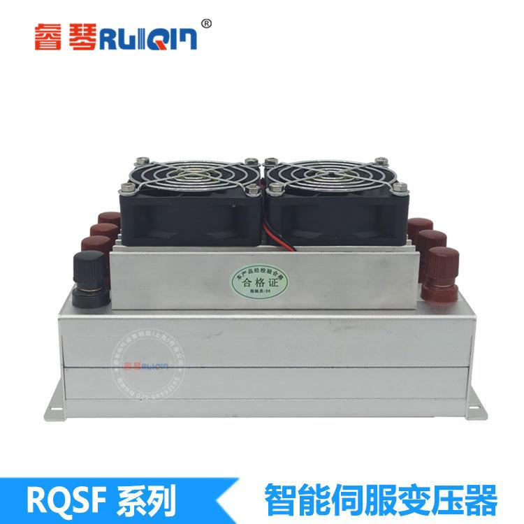RUIQIN - Máy biến áp đặc biệt cho động cơ servo Máy biến áp điện tử thông minh