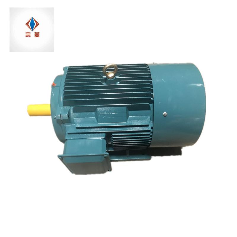 Mô-tơ điện / Động cơ điện không đồng bộ ba pha dọc YE2-250
