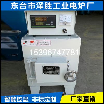 Thiết bị nhiệt điện Nhà máy Zesheng trực tiếp cung cấp thiết bị sưởi điện lò điện công nghiệp SX2-2.