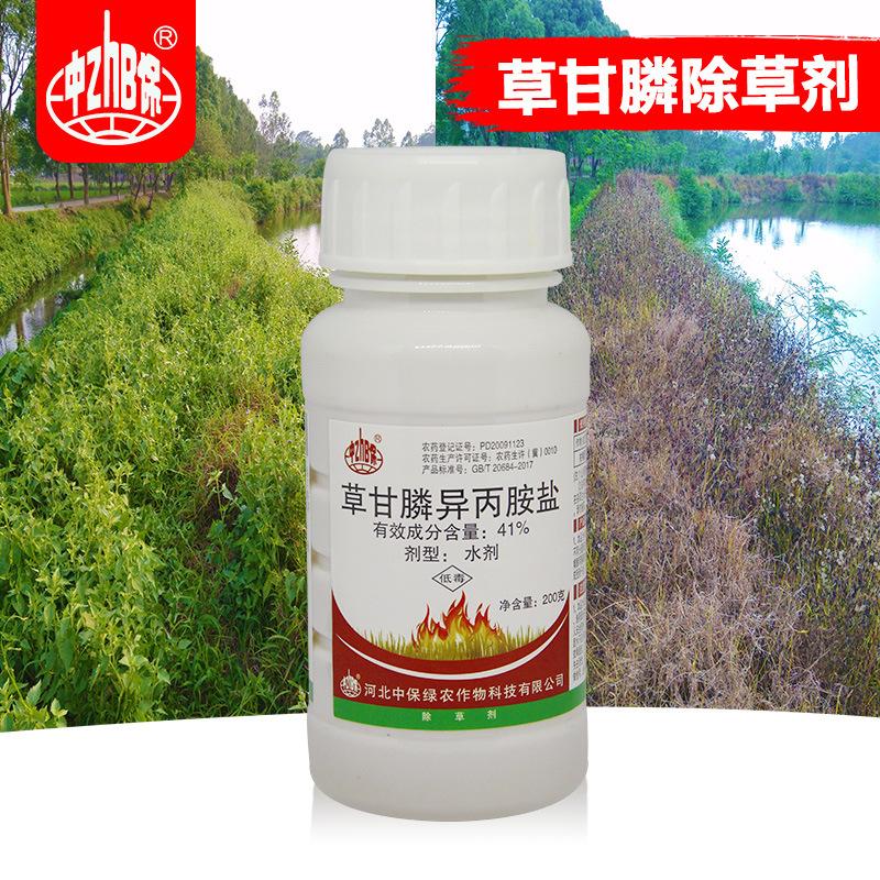 ZHB NLSX Thuốc trừ sâu Zhongbao 41% glyphosate isopropylamine muối thuốc trừ sâu thuốc trừ sâu gốc g
