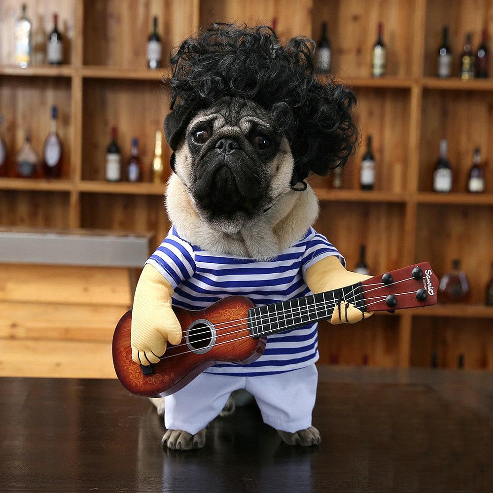 Jxanry Vật nuôi Thú cưng biến thành một tay ghi-ta chó biến thành một con mèo ngộ nghĩnh chơi guitar