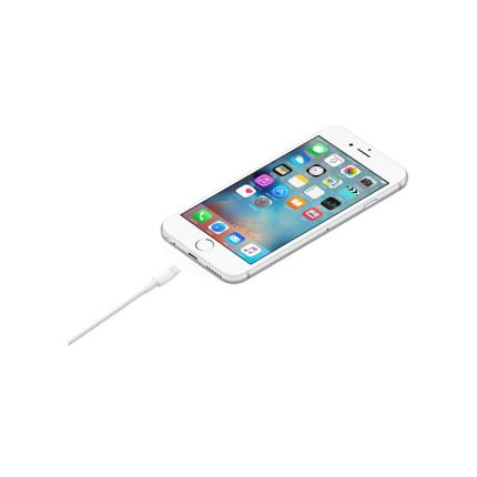 Dây USB Táo/ Apple flash vào cáp USB (1b)
