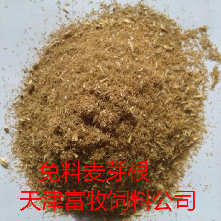 Nguyên liệu sản xuất thức ăn chăn nuôi Large supply of feed for cattle and sheep breeding malt root