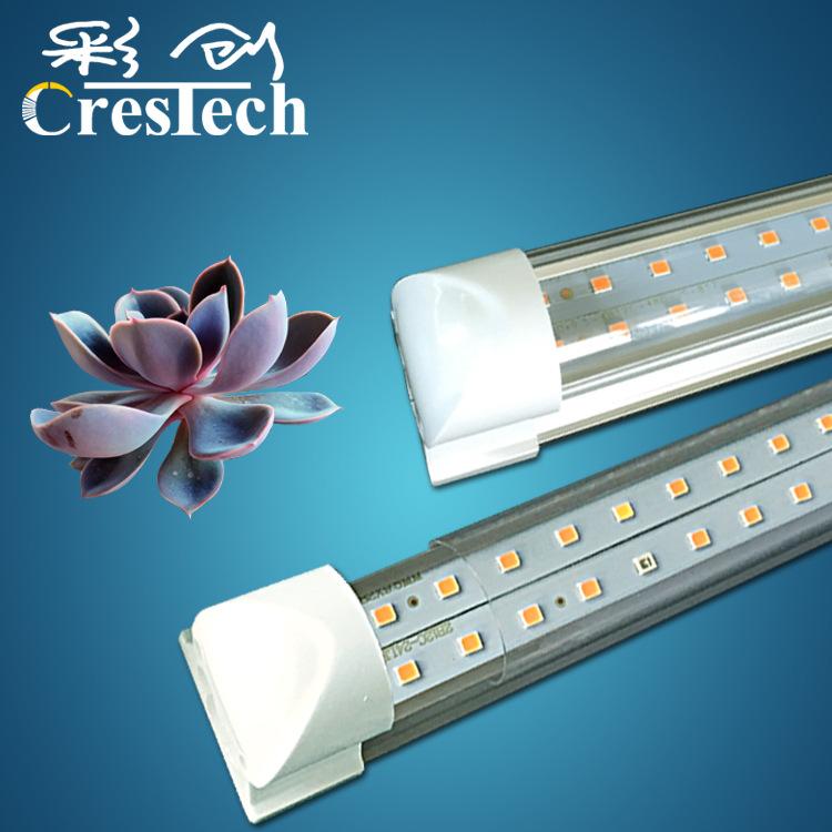 Crestech Đèn kích thích sinh trưởng cây trồng Nhà máy bán buôn ánh sáng mọng nước với ánh sáng màu t