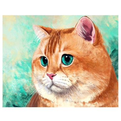 Tranh thêu chữ thập Mới DIY tranh kim cương 5D tranh thêu chữ thập màu xanh da trời màu cam mèo tran