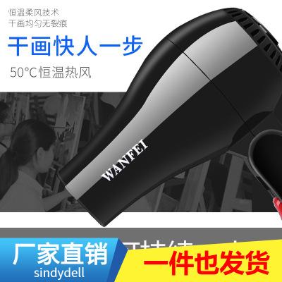 Máy sấy, tạo dang tóc Wanfei Art Power Kiểm tra đặc biệt Máy sấy tóc Pin có thể sạc lại Máy sấy tóc