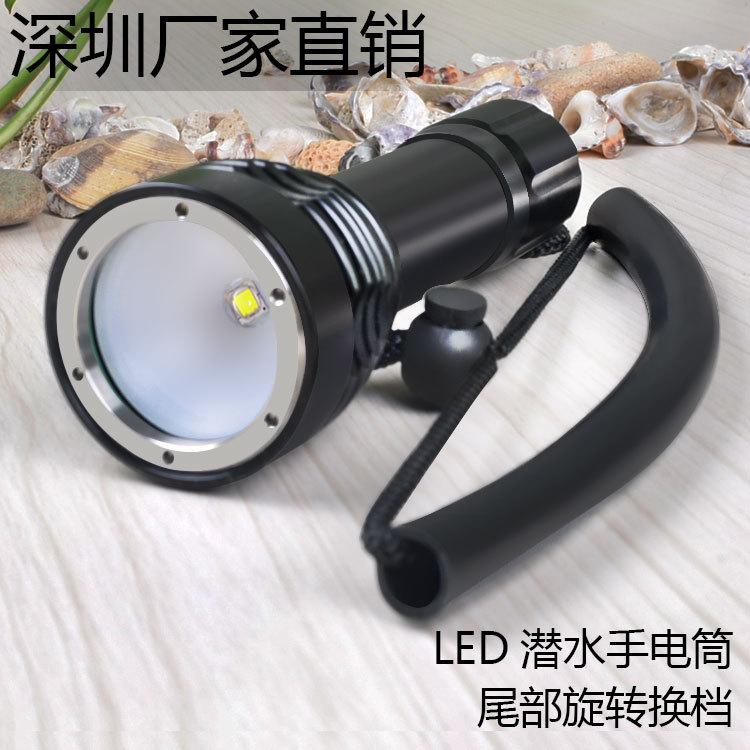 Thiết bị chiếu sáng Đèn pin lặn chuyên nghiệp .