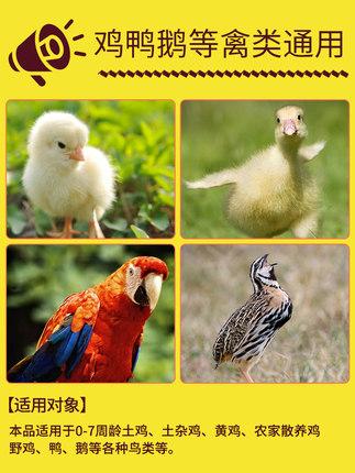 ZHONGNONGKANGCHU Thức ăn cho gà Chick thức ăn gà hạt mở vật liệu cá mồi vịt ăn vẹt chim bồ câu chim