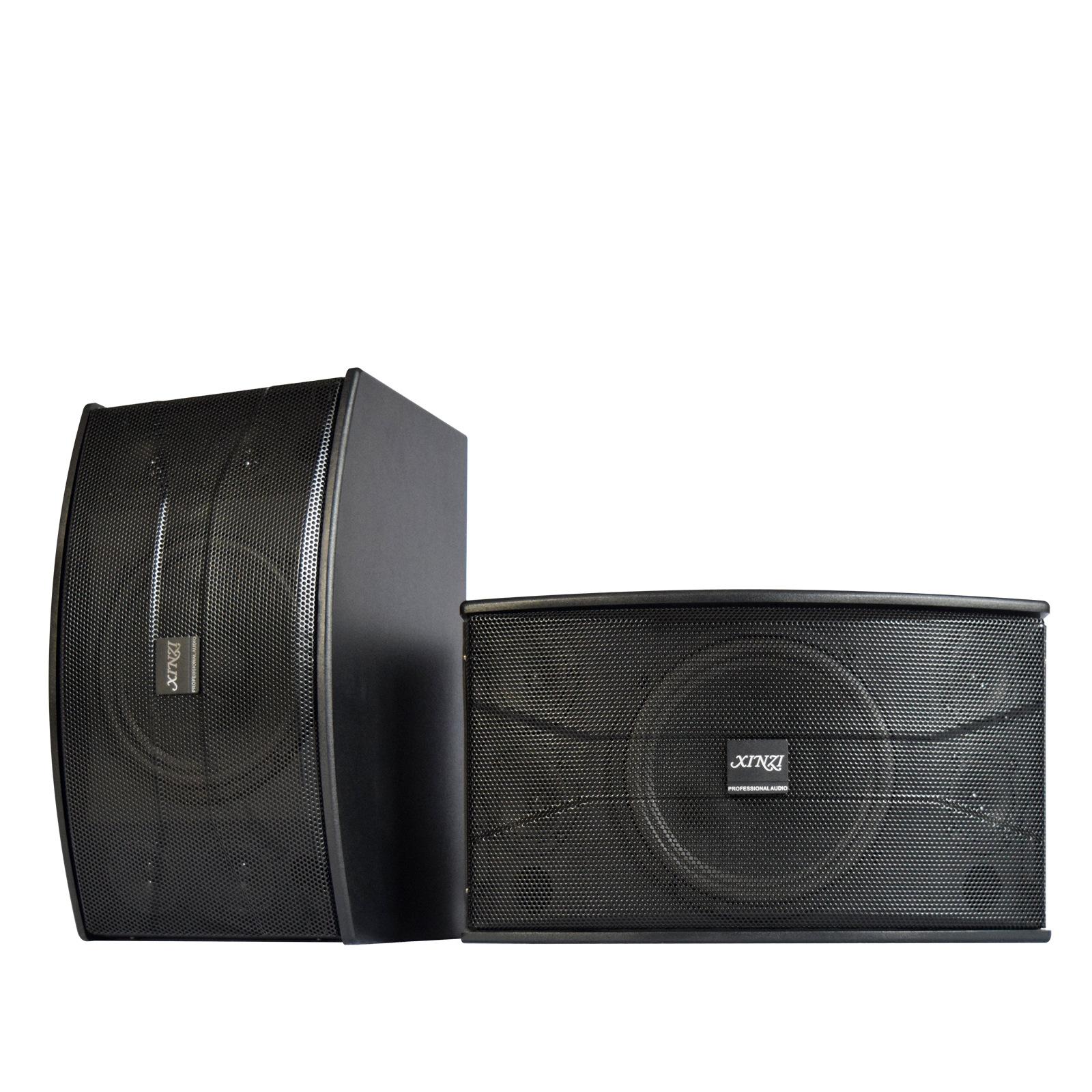 XINZI Cinema gia đình Nhà máy bán buôn gói thẻ chuyên nghiệp 10 inch rạp hát tại nhà ktv âm thanh đa