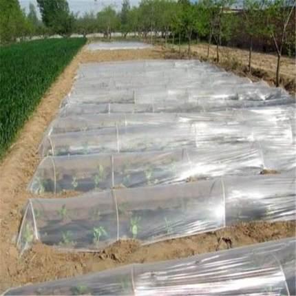 Màng che phủ nhà kính Màng phủ trắng nông nghiệp, cách nhiệt, màng nông nghiệp giữ ẩm, màng thổi, mà
