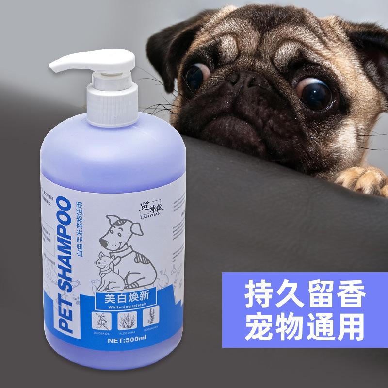 Sữa tắm cho thú cưng Hiệu quả: Loại bỏ bọ chét và chấy rận