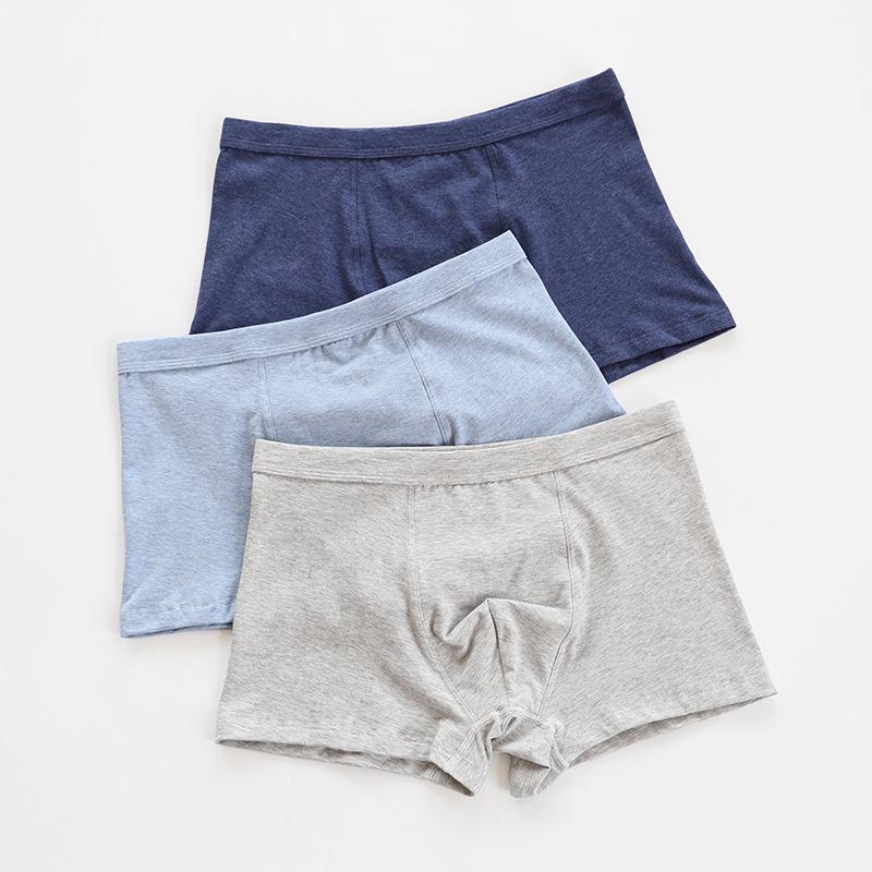 Quần lót Nhà máy bán hàng trực tiếp 19 người đàn ông mới cotton cotton màu quần boxer cotton lớp Một