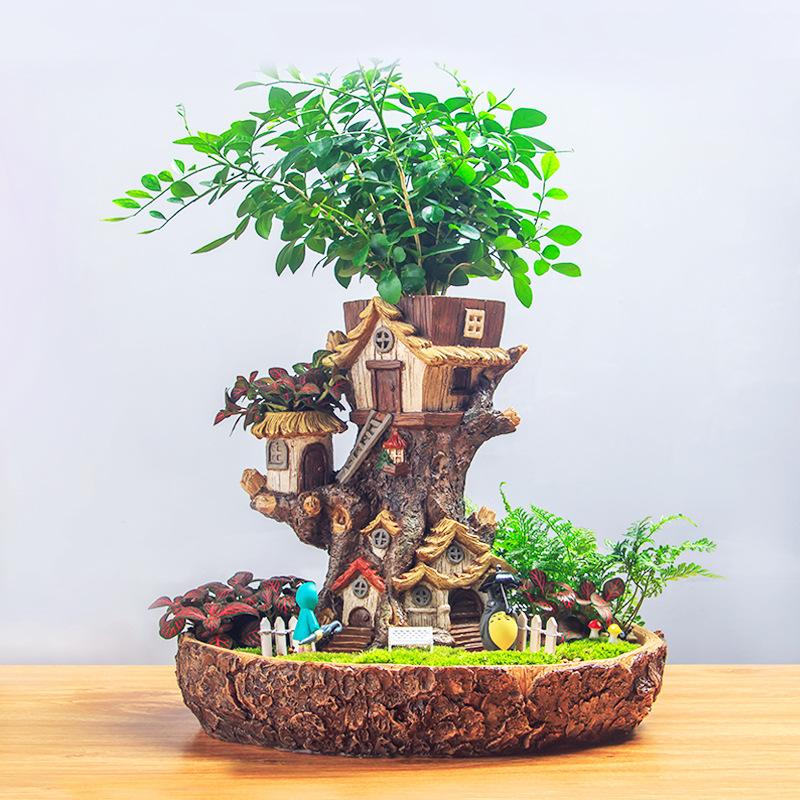YDSH Cảnh quan Mini Thiết kế cảnh quan ban đầu nông thôn micro cảnh nhựa cây nhà mọng nước hoa văn p