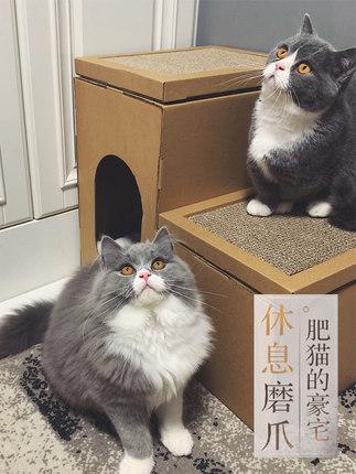 Ngôi nhà cho mèo thú cưng với thiết kế dễ thương .