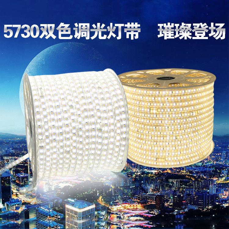 Litai Đèn LED dây mới ba tông màu sáng hai dây đèn led 2835/5730 điều khiển màu điều khiển từ xa phò