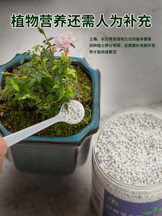 Phân bón Phân bón hợp chất nitơ, phốt pho và kali Phân bón phổ quát Phân bón hoa hữu cơ trong chậu P