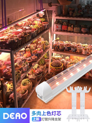 Đèn Led Ống kích thích sinh trưởng cây trồng mọng nước trong nhà .