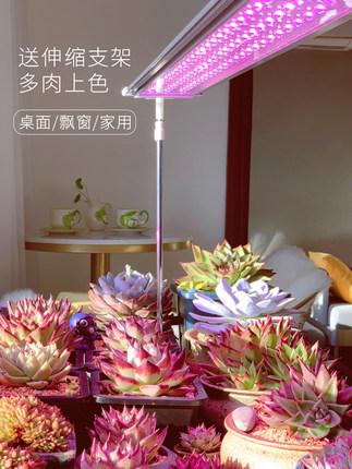 Đèn Led kích thích sinh trưởng cây trồng mọng nước lấp đầy ánh sáng .