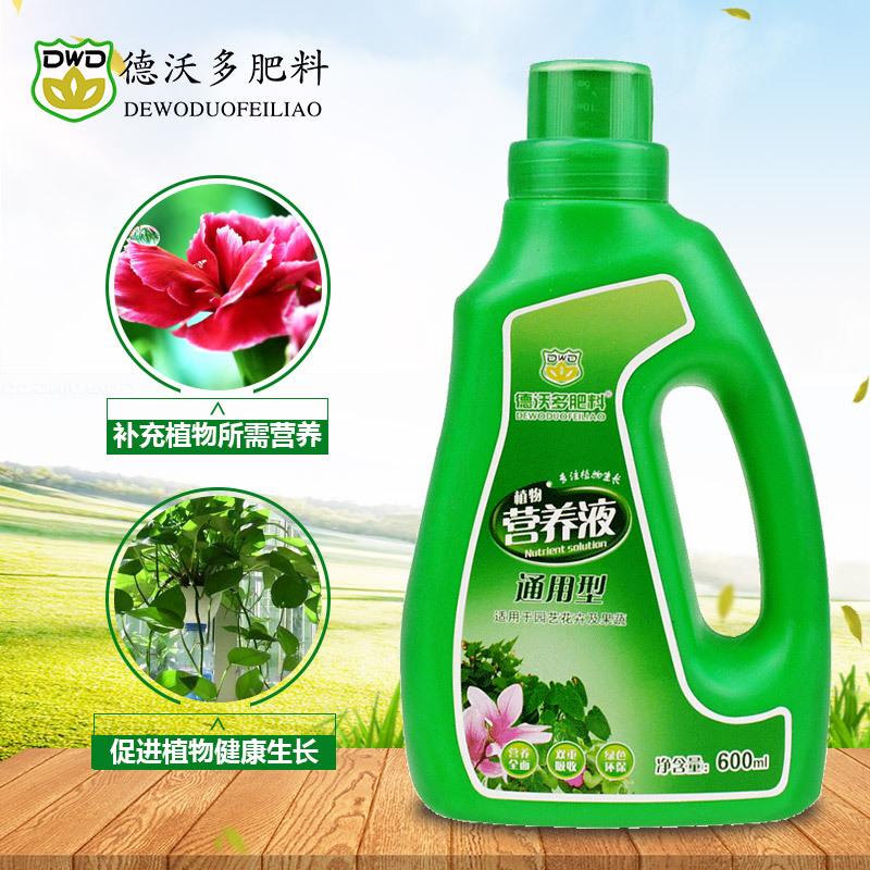 Dung dịch Phân bón dinh dưỡng thực vật DVordo trong chậu trồng rau.