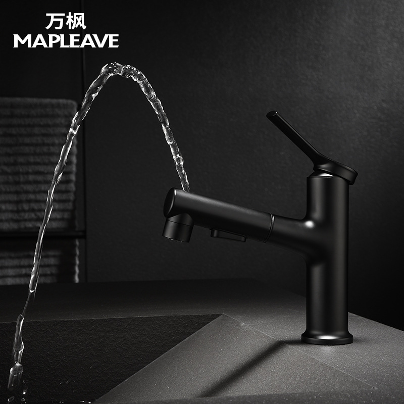 Wanfeng bathroom bathroom washbasin faucet pull-out basin faucet multifunctional hot and cold mixing