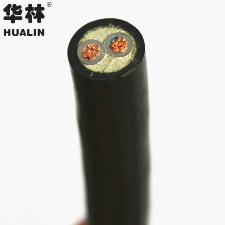 Hualin YJV2*10 square high quality national standard copper core low voltage flame retardant power c
