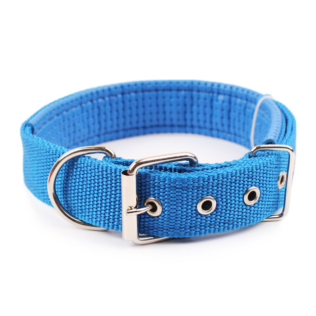 Shuangyu pet factory direct sales PP Ribbon lining polypropylene pet foam dog collar collar collar c