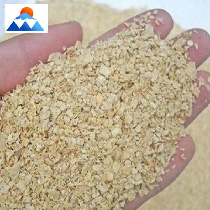 Poultry, cattle, sheep and pigs can feed soybean meal