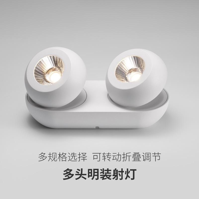 QIANLONG New Wuzhu lighting surface mounted four-head bold spotlight led two-head ceiling lamp livin