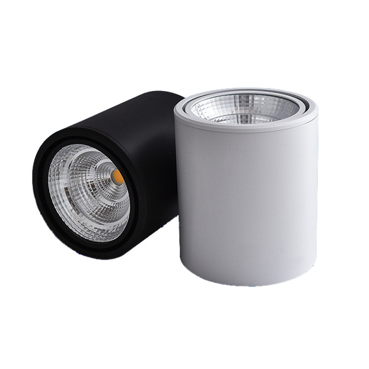 SAISIJIA Zhongshan LED Lighting Commercial Home Surface Mounted Downlight Spotlight Shell Ceiling Ch