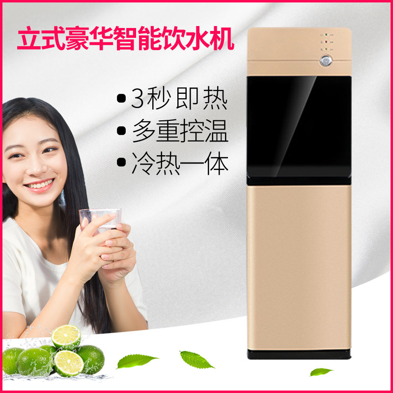 Vertical pipeline machine direct drinking ice-heat integrated water purifier consumer and commercial